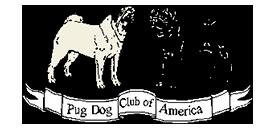 Pug Dog Club America